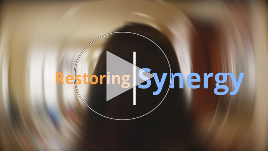 Vestibular Continuing Education - Restoring Synergy course covering central and peripheral vestibular disorders