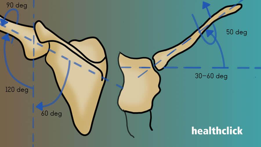 Identify Appropriate Shoulder Dysfunction Treatment
