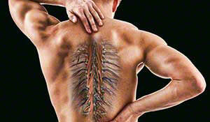 Thoracic Spine continuing education course for PT and PTA
