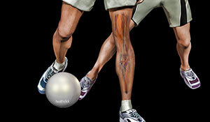 Lower Extremity Orthopedic and Sports Injuries in the Young Adult