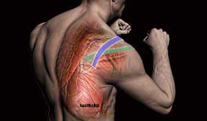 Orthopedic Sports Taping Evidenced Based Continuing Education Course for Physical Therapists and Occupational Therapists