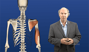 Online Continuing Education in various clinical areas like vestibular, neurological, orthopedic, cancer rehav and other rehab related specialities